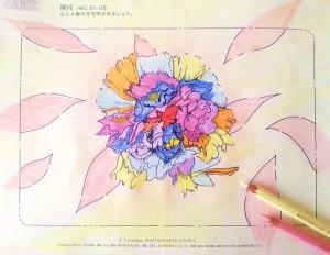 開花-11-3